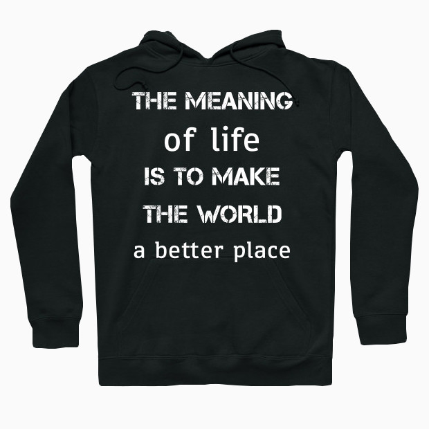 Meaning of life Hoodie