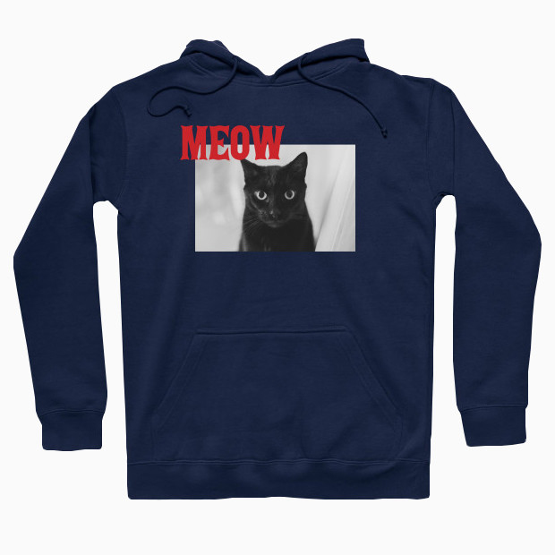 The cat says meow Hoodie