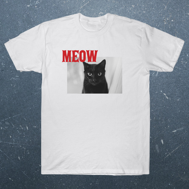 The cat says meow T-Shirt